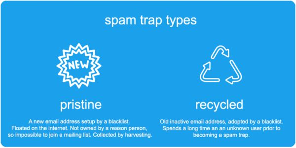 Two Types of Email Spam Traps