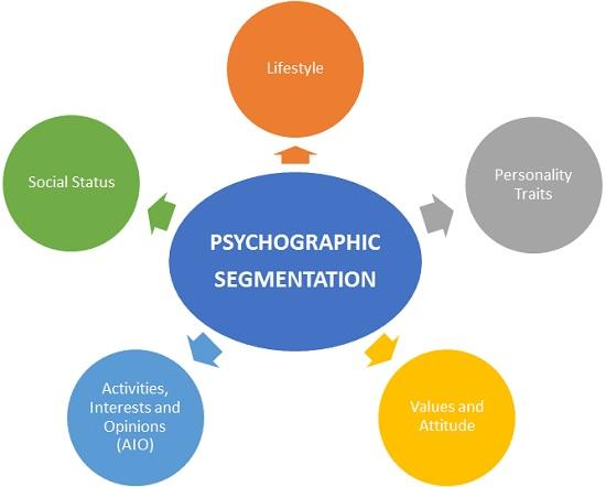 audience segmentation definition