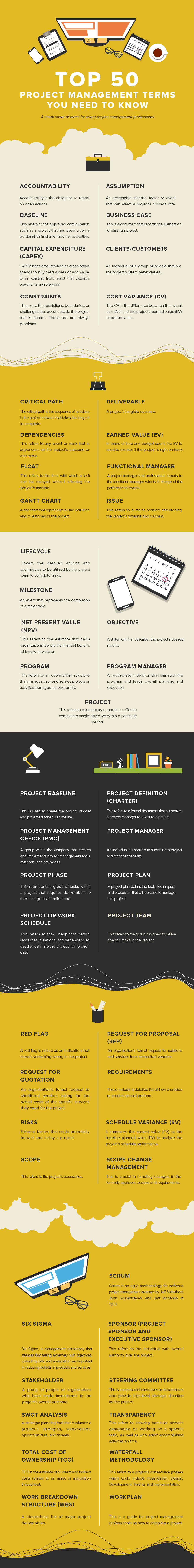 project-management-infographics